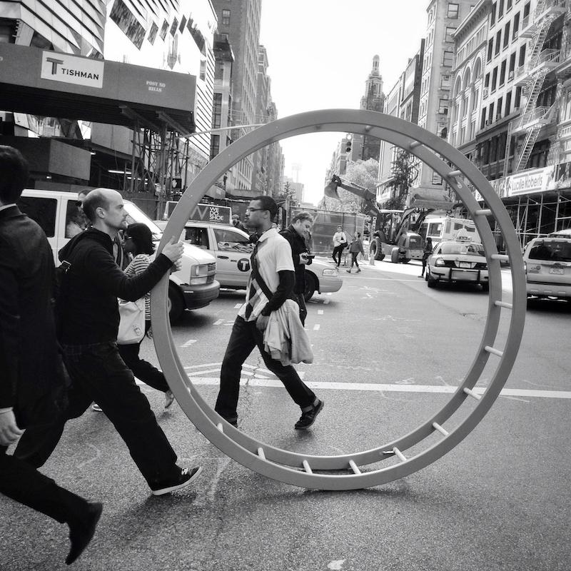 """The Circle Of Life"""